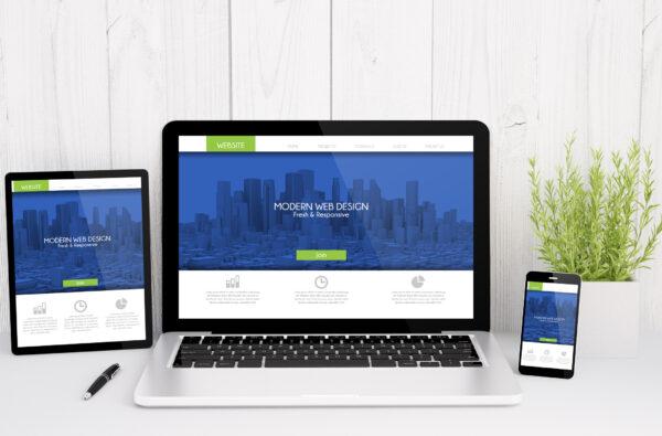 SEO, website design, website designers